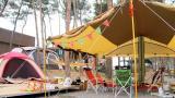 서천 늘푸른 캠핑장 작은 사진