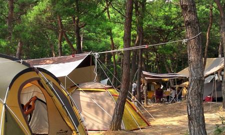 명성 가족 캠핑촌 작은이미지