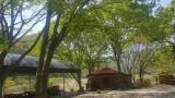 누룽지 캠핑장 작은 사진