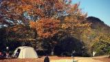 캠프 블루문 작은 사진