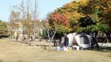 공릉관광지 캠핑장 작은 사진