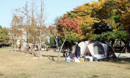 공릉관광지 캠핑장 작은이미지